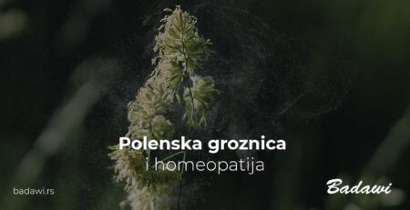 Polenska groznica i homeopatija